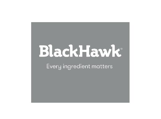 31st Blackhawk logo